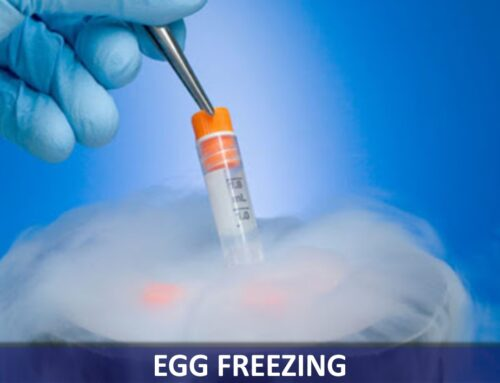 Egg freezing – helps a woman to decide her pregnancy